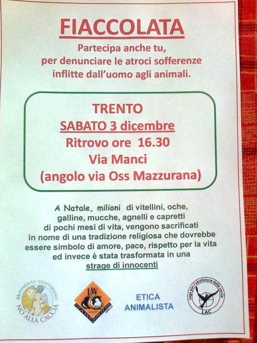03 dicembre 2011 Trento fiaccolata per denunciare lo sterminio degli animali nel periodo natalizio (e non solo!) 231
