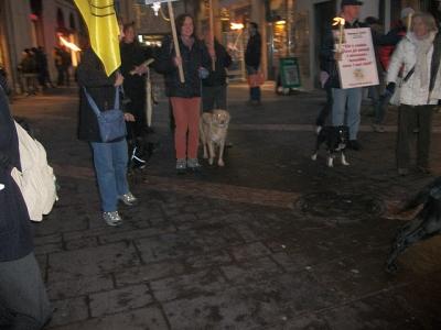 03 dicembre 2011 Trento fiaccolata per denunciare lo sterminio degli animali nel periodo natalizio (e non solo!) 49