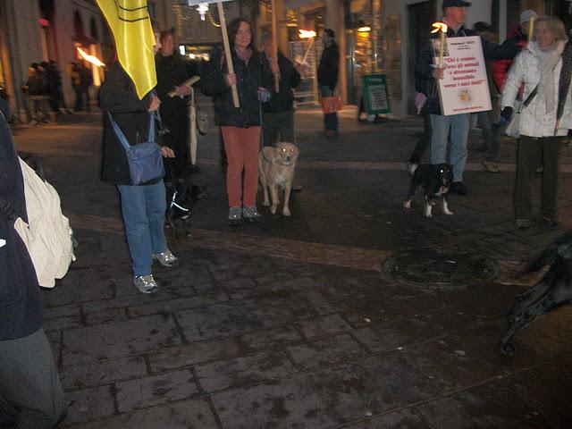 03 dicembre 2011 Trento fiaccolata per denunciare lo sterminio degli animali nel periodo natalizio (e non solo!) 232