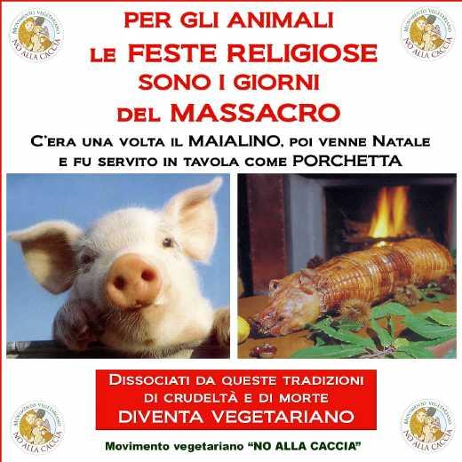 03 dicembre 2011 Trento fiaccolata per denunciare lo sterminio degli animali nel periodo natalizio (e non solo!) 234