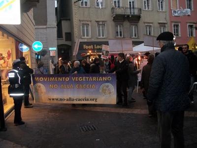 03 dicembre 2011 Trento fiaccolata per denunciare lo sterminio degli animali nel periodo natalizio (e non solo!) 76