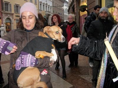03 dicembre 2011 Trento fiaccolata per denunciare lo sterminio degli animali nel periodo natalizio (e non solo!) 84