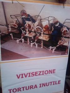 MANIFESTAZIONE CONTRO LA VIVISEZIONE - MILANO 5 marzo 2011 79