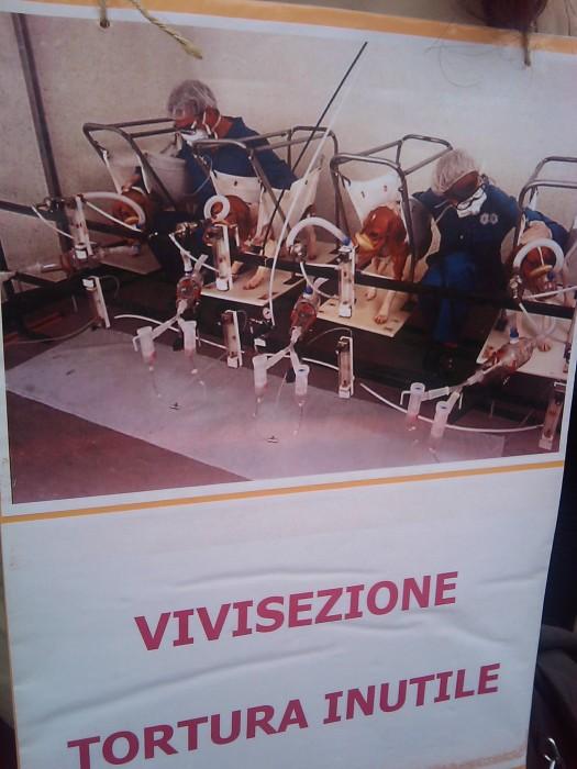 MANIFESTAZIONE CONTRO LA VIVISEZIONE - MILANO 5 marzo 2011 183