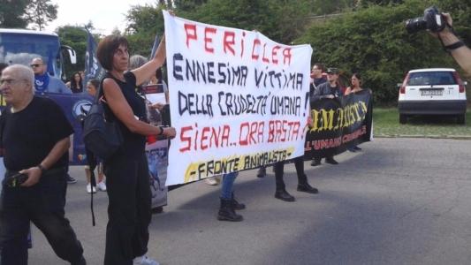 Manifestazione contro il Palio di Siena - 16.08.2015 36