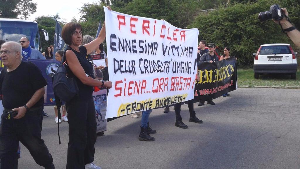 Manifestazione contro il Palio di Siena - 16.08.2015 78