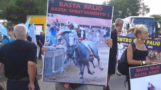 Manifestazione contro il Palio di Siena - 16.08.2015 37