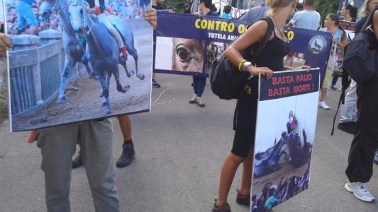 Manifestazione contro il Palio di Siena - 16.08.2015 38