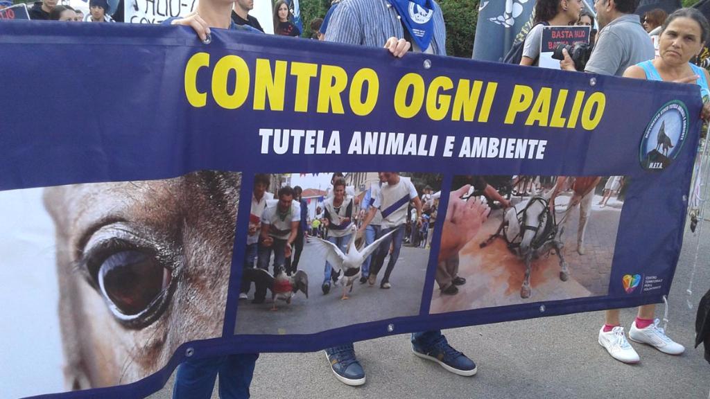 Manifestazione contro il Palio di Siena - 16.08.2015 81