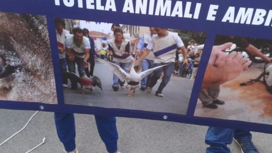 Manifestazione contro il Palio di Siena - 16.08.2015 41