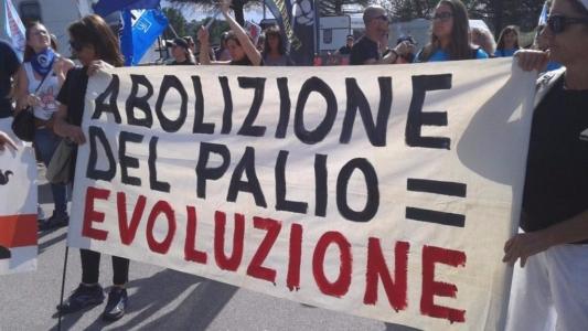 Manifestazione contro il Palio di Siena - 16.08.2015 5