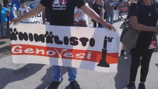 Manifestazione contro il Palio di Siena - 16.08.2015 6