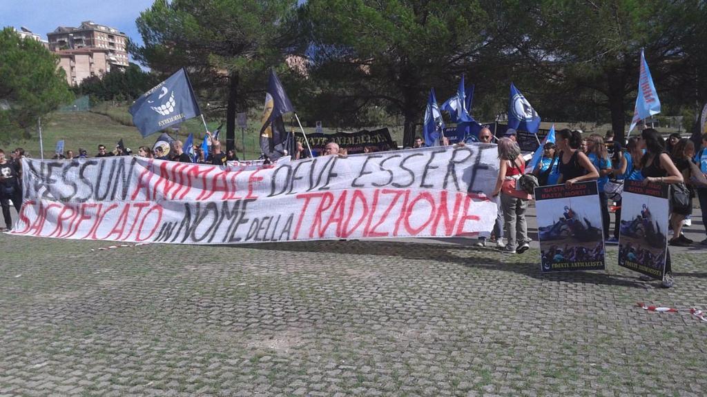 Manifestazione contro il Palio di Siena - 16.08.2015 51