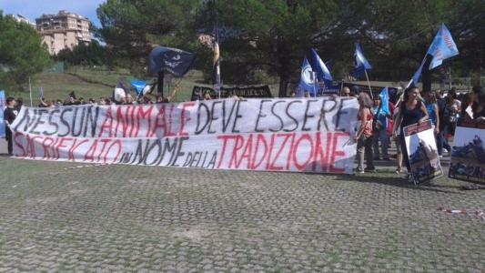 Manifestazione contro il Palio di Siena - 16.08.2015 10