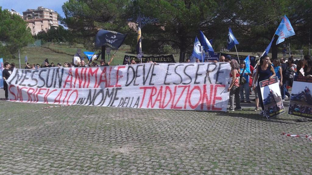 Manifestazione contro il Palio di Siena - 16.08.2015 52