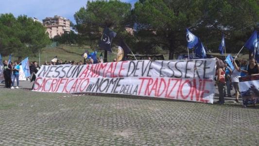 Manifestazione contro il Palio di Siena - 16.08.2015 11