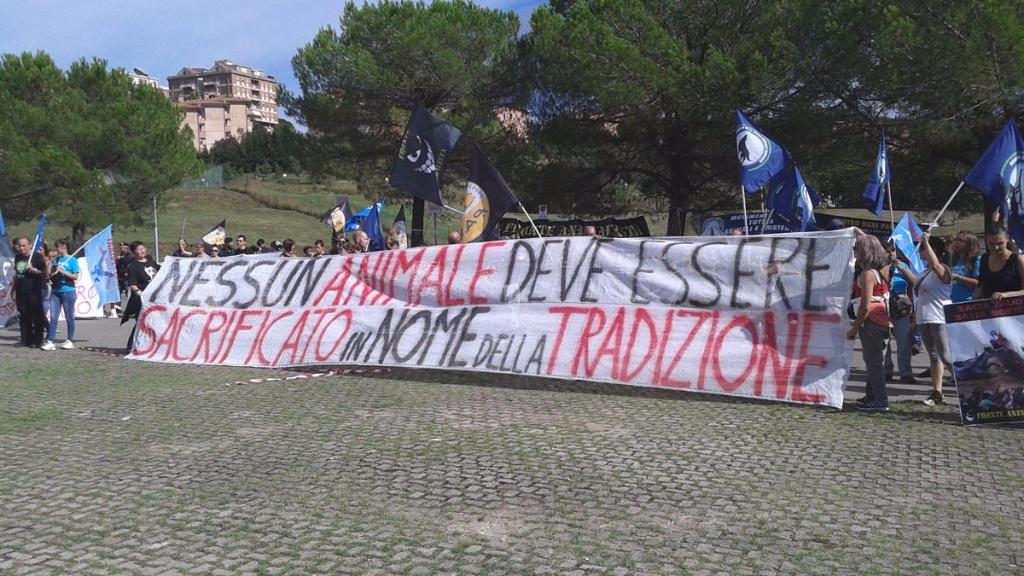 Manifestazione contro il Palio di Siena - 16.08.2015 53