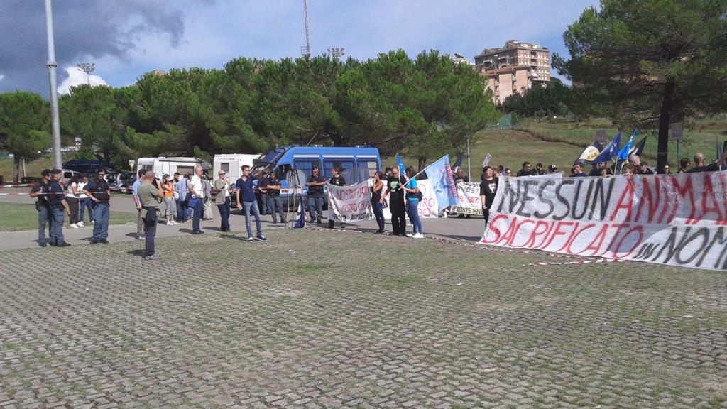 Manifestazione contro il Palio di Siena - 16.08.2015 54