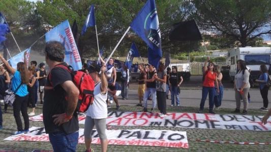 Manifestazione contro il Palio di Siena - 16.08.2015 17