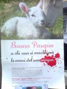 TAVOLO INFORMATIVO SULLA STRAGE PASQUALE DI AGNELLI E CAPRETTI - 24.03.2012 44