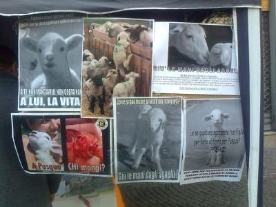 TAVOLO INFORMATIVO SULLA STRAGE PASQUALE DI AGNELLI E CAPRETTI - 24.03.2012 1