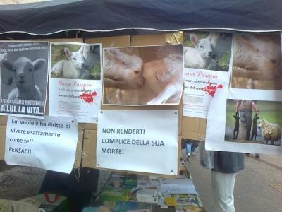 TAVOLO INFORMATIVO SULLA STRAGE PASQUALE DI AGNELLI E CAPRETTI - 24.03.2012 3