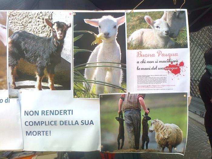TAVOLO INFORMATIVO SULLA STRAGE PASQUALE DI AGNELLI E CAPRETTI - 24.03.2012 54