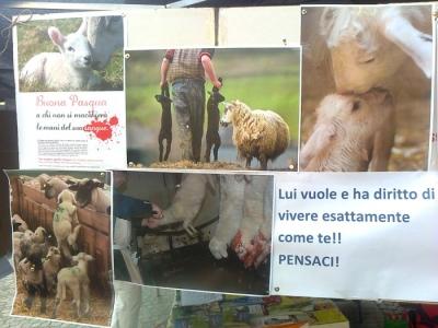 TAVOLO INFORMATIVO SULLA STRAGE PASQUALE DI AGNELLI E CAPRETTI - 24.03.2012 8