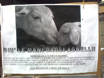 TAVOLO INFORMATIVO SULLA STRAGE PASQUALE DI AGNELLI E CAPRETTI - 24.03.2012 13