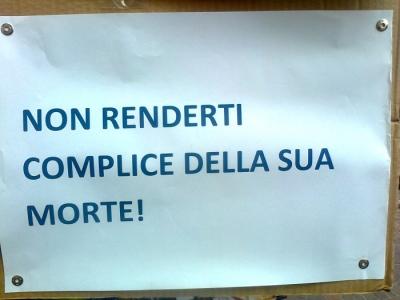 TAVOLO INFORMATIVO SULLA STRAGE PASQUALE DI AGNELLI E CAPRETTI - 24.03.2012 17