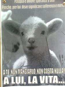 TAVOLO INFORMATIVO SULLA STRAGE PASQUALE DI AGNELLI E CAPRETTI - 24.03.2012 19