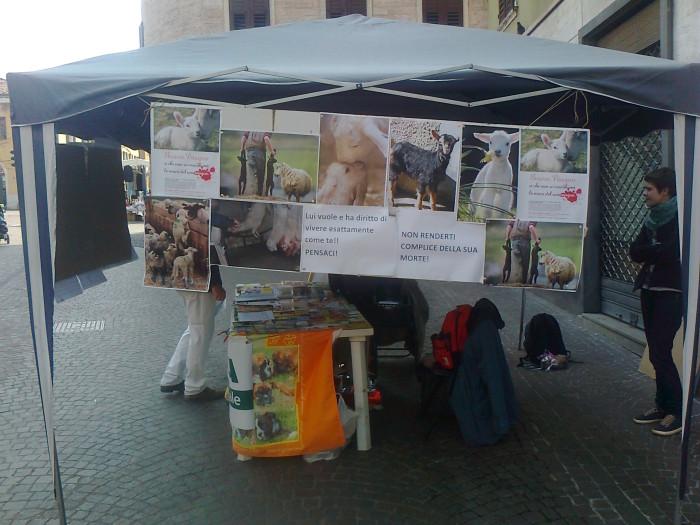 TAVOLO INFORMATIVO SULLA STRAGE PASQUALE DI AGNELLI E CAPRETTI - 24.03.2012 75