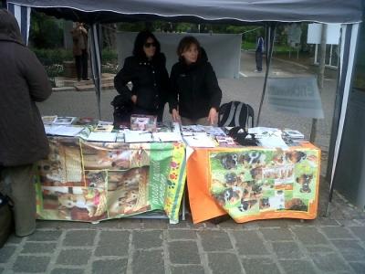 14.04.2012 - BOLZANO - TAVOLO INFORMATIVO CONTRO LA CACCIA E SULL'ALIMENTAZIONE VEGANA 56