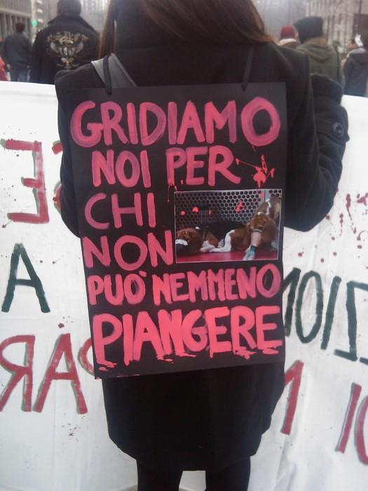 MANIFESTAZIONE CONTRO LA VIVISEZIONE - MILANO 5 marzo 2011 110
