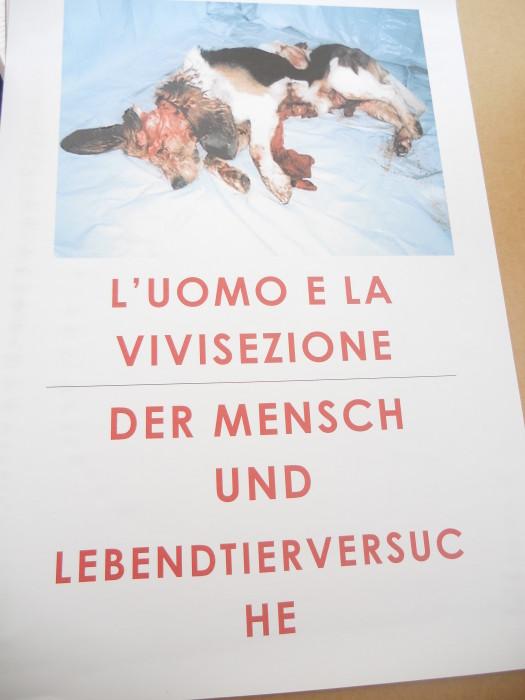 Bolzano 04.02.2012 manifestazione contro lo sfruttamento degli animali 329