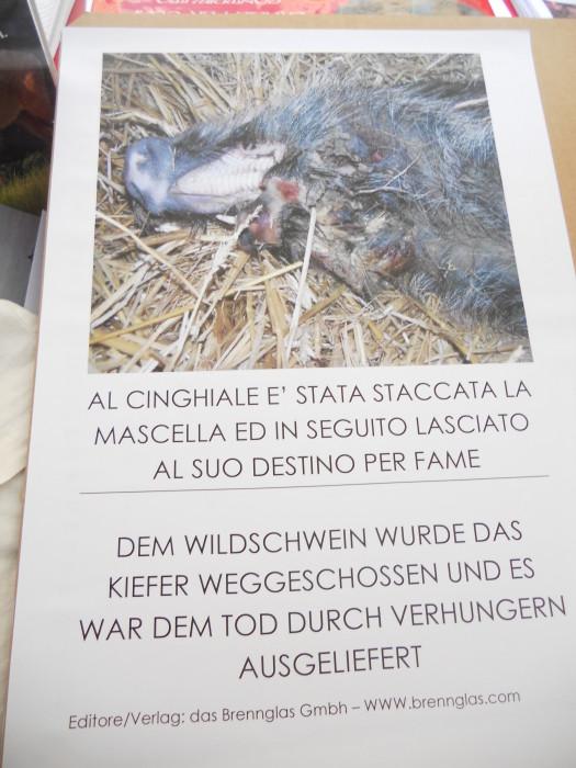 Bolzano 04.02.2012 manifestazione contro lo sfruttamento degli animali 331