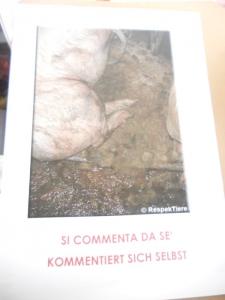 Bolzano 04.02.2012 manifestazione contro lo sfruttamento degli animali 1
