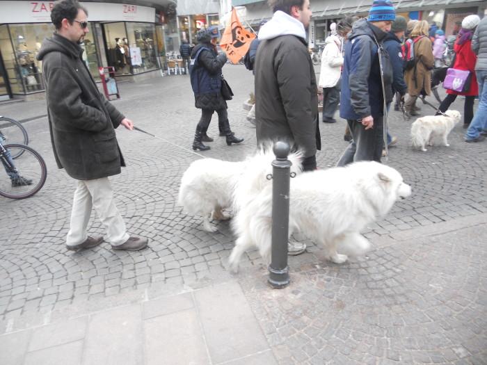 Bolzano 04.02.2012 manifestazione contro lo sfruttamento degli animali 187