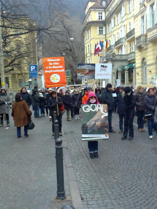 Bolzano 04.02.2012 manifestazione contro lo sfruttamento degli animali 188