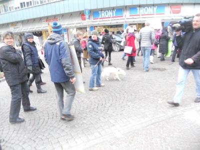Bolzano 04.02.2012 manifestazione contro lo sfruttamento degli animali 25
