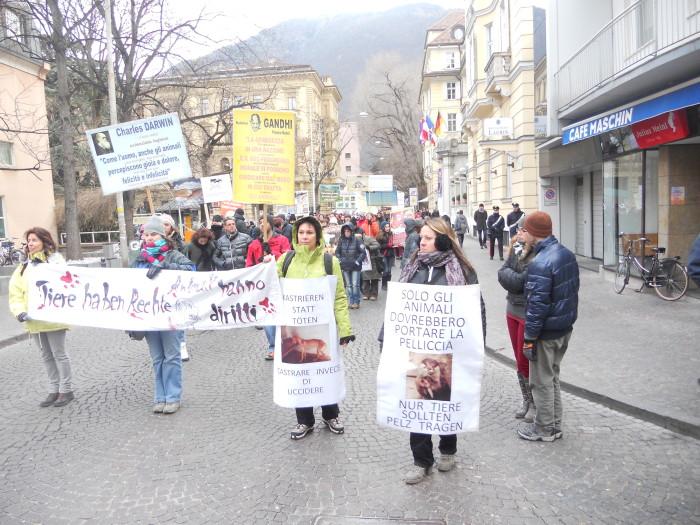 Bolzano 04.02.2012 manifestazione contro lo sfruttamento degli animali 202