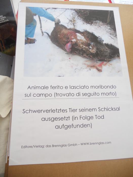 Bolzano 04.02.2012 manifestazione contro lo sfruttamento degli animali 216
