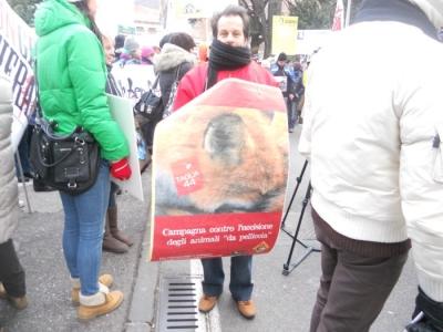 Bolzano 04.02.2012 manifestazione contro lo sfruttamento degli animali 50