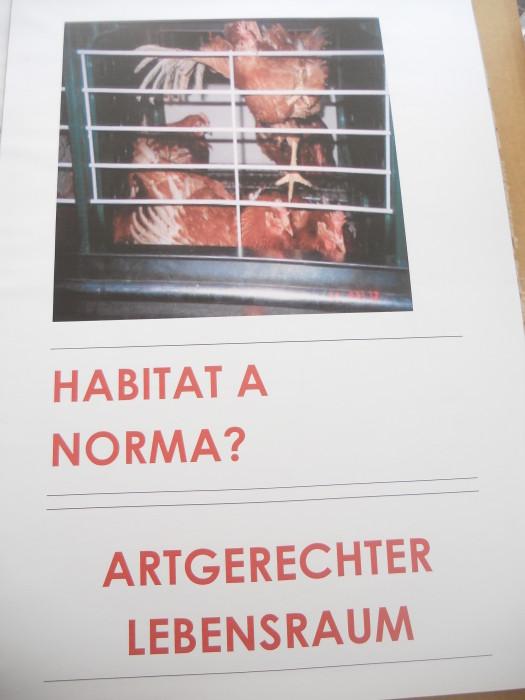 Bolzano 04.02.2012 manifestazione contro lo sfruttamento degli animali 224