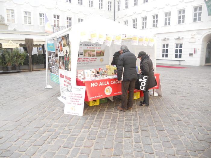 Bolzano 04.02.2012 manifestazione contro lo sfruttamento degli animali 240