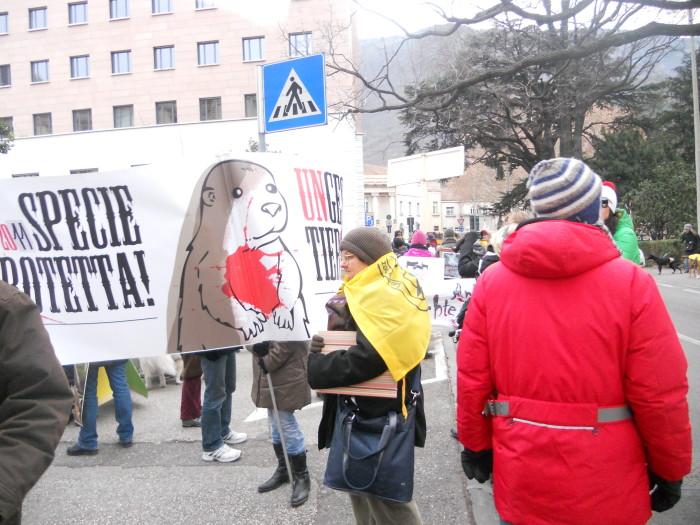 Bolzano 04.02.2012 manifestazione contro lo sfruttamento degli animali 248