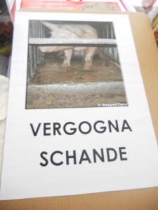 Bolzano 04.02.2012 manifestazione contro lo sfruttamento degli animali 103