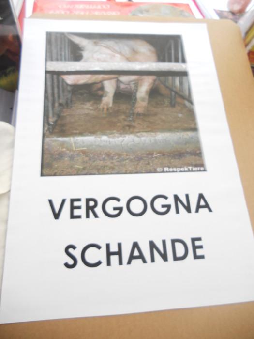 Bolzano 04.02.2012 manifestazione contro lo sfruttamento degli animali 273