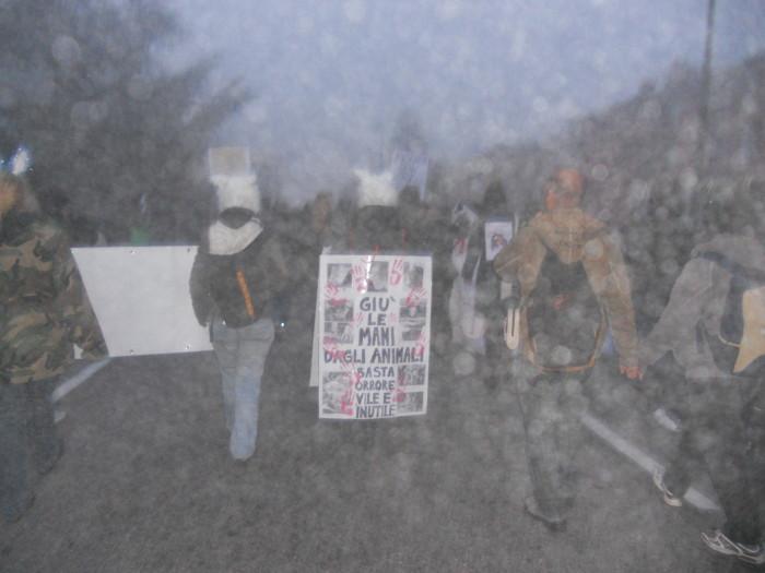 19.11.11- MANIFESTAZIONE CONTRO IL LAGER 196