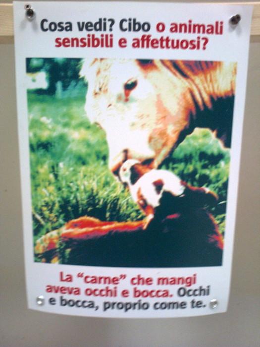 FA' LA COSA GIUSTA 2011 - MOSTRA ANIMALISTA 274